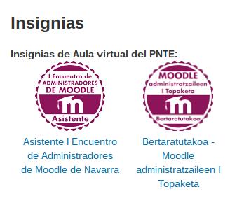 Insignia de los asistentes al I Encuentro de Administradores de Moodle de Navarra